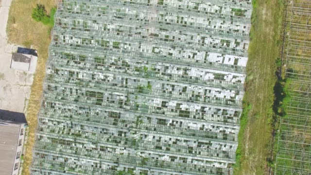 aerial: greenhouses on agricultural farms - orticoltura video stock e b–roll