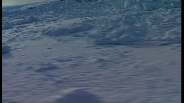 vídeos y material grabado en eventos de stock de air views of glaciers more air views of glacier ice sheet showing long splits in the ice with water visible track / more air views of glacier ice... - con mucha luz
