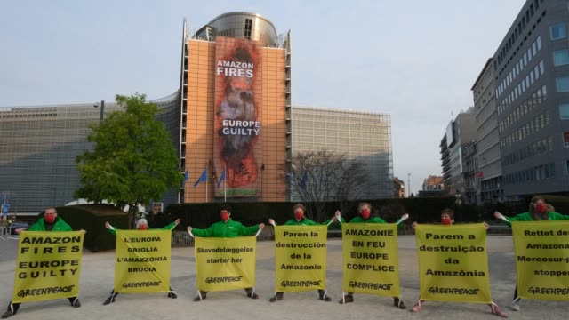 greenpeace activists roll down a 30-metre banner mimicking a hole burned through the berlaymont, the eu commission headquarter during a greenpeace... - tropical rainforest stock videos & royalty-free footage