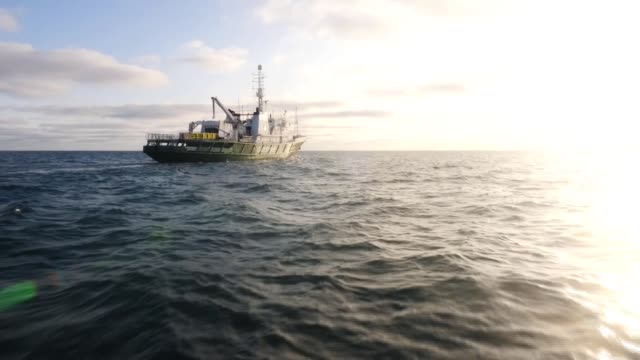 """greenpeace dumping boulders in north sea to prevent """"illegal"""" fishing; north sea: dogger bank: ext mv esperanza greenpeace ship at sea - boulder rock stock videos & royalty-free footage"""