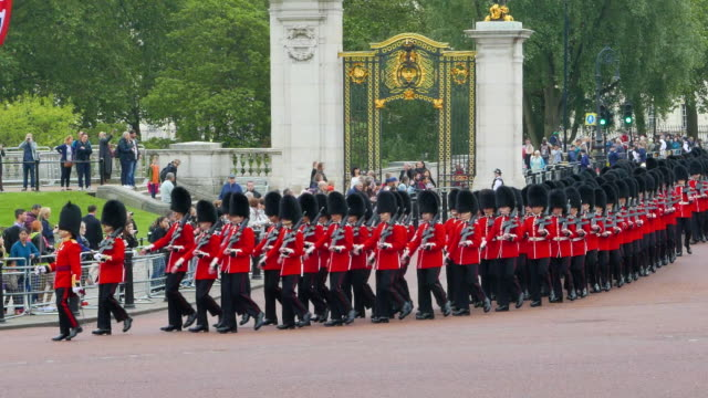 vídeos de stock, filmes e b-roll de grenadier guards at buckingham palace - eco tourism