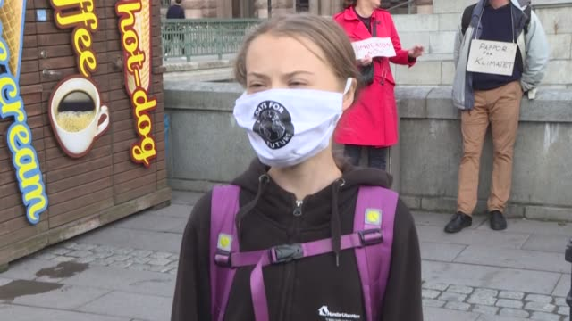 """stockvideo's en b-roll-footage met greta thunberg and other climate activists wear face masks and hold up signs about climate change during a """"fridays for future"""" protest in sweden's... - clean"""