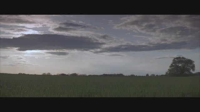 vídeos de stock e filmes b-roll de ws, grey clouds over green field  - formato letterbox