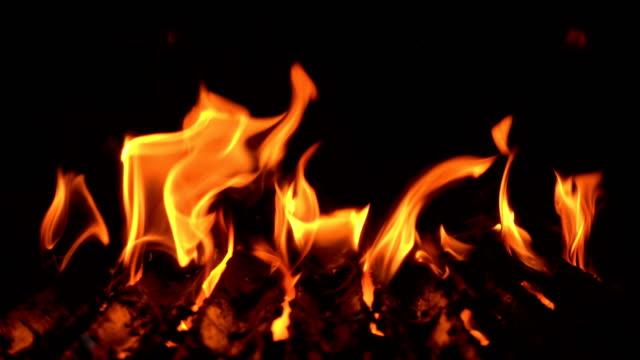 vidéos et rushes de grill de flammes sur fond noir - foyer de cheminée