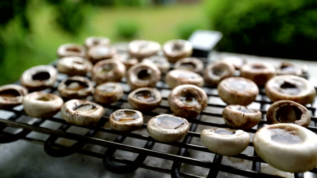 grilled champignons, mushrooms - mushroom stock videos and b-roll footage