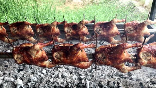 grilled chicken - pollo alla brace video stock e b–roll