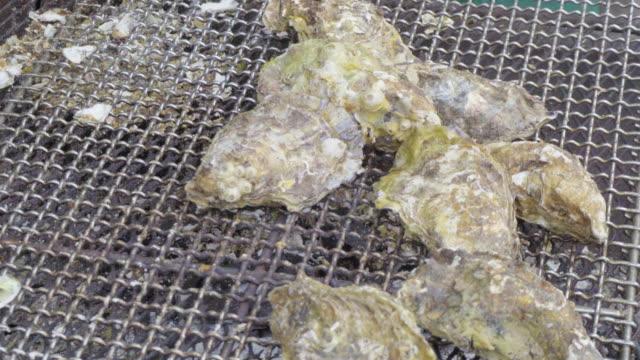 vídeos de stock, filmes e b-roll de grilled oyster - bbq sauce