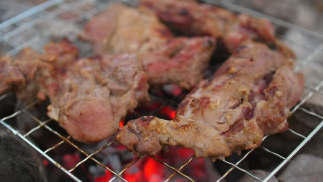 grilled pork on camping bonfire - ash tree stock videos & royalty-free footage