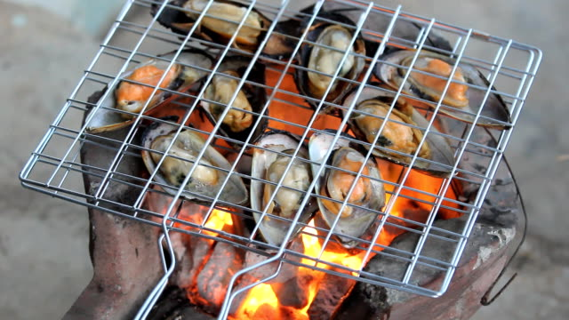 grilled scallop shell on furnace - clam seafood stock videos and b-roll footage