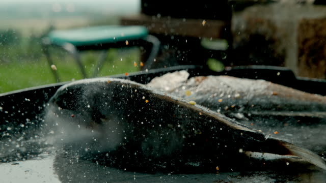 slo mo grilling a stuffed fish on a hot plate - fried stock videos & royalty-free footage