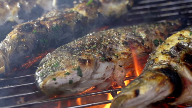slo mo grilling fish on the bbq - briquette stock videos & royalty-free footage
