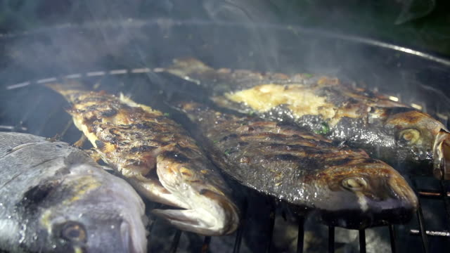 slo mo grilling fish - briquette stock videos & royalty-free footage