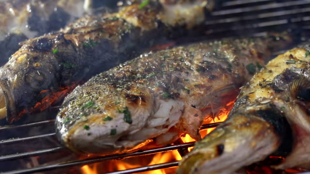 cu grilling fish - grilled stock videos and b-roll footage