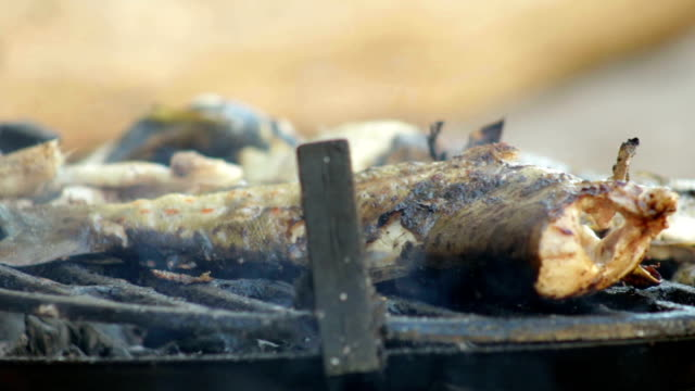 grilling fish - briquette stock videos & royalty-free footage