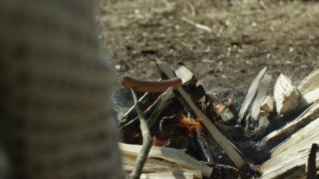 grilling hot dogs on a campfire in nature - hiking stock videos & royalty-free footage