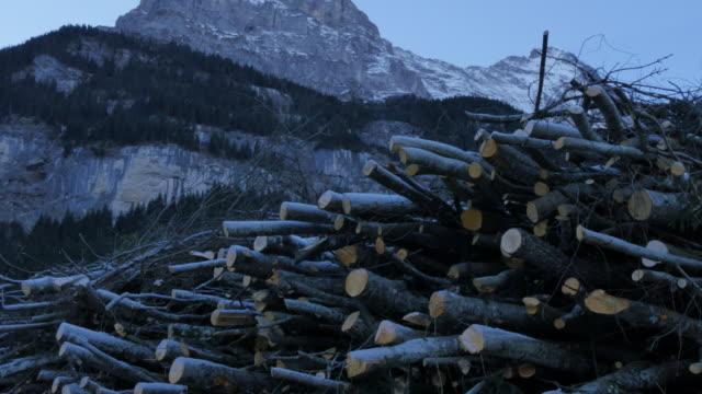 Grindelwald Village, Firewood and Mount Eiger, Bernese Oberland, Canton of Bern, Switzerland, Europe