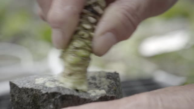 grinding wasabi on a rock slow motion - wasabi stock videos and b-roll footage
