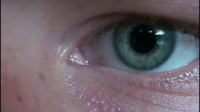 grün-blaues Auge Detailaufnahme