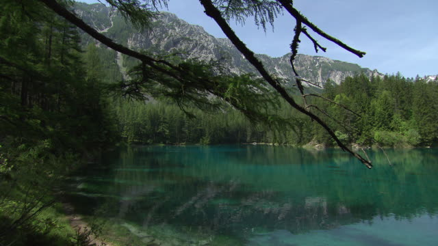 grüner see / green lake (styria - austria) - 40 seconds or greater stock videos & royalty-free footage