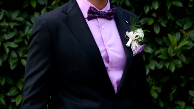 groom with jacket bow tie and a flower - domestic staff stock videos & royalty-free footage