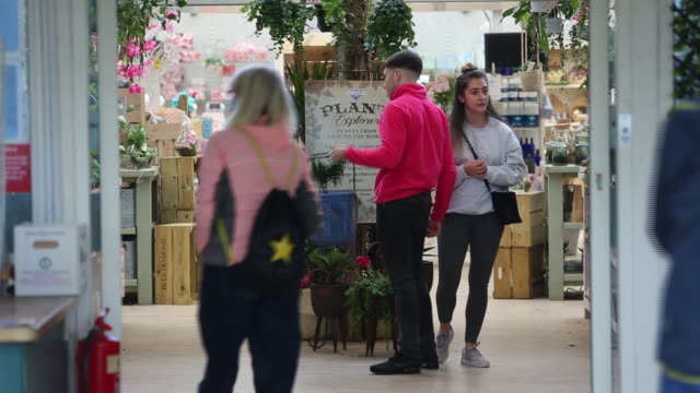 grosvenor garden centre reopened to the public, in chester, cheshire west and chester, england, uk, on friday, may 15, 2020. - gardening stock videos & royalty-free footage