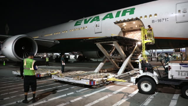 ground crew workers unload a federal emergency management agency project airbridge delivery of ppe from taipei, taiwan. project airbridge, a program... - physical activity stock videos & royalty-free footage