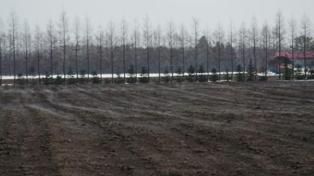 ground fog from field, hokkaido, japan - satoyama scenery stock videos & royalty-free footage
