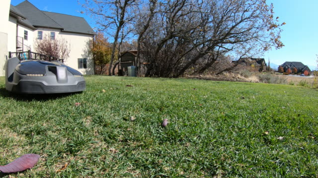 ground level view of robotic lawn mower cutting grass passing by - grass stock videos & royalty-free footage