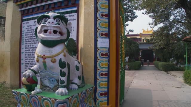 grounds at buddhist temple - rappresentazione di animale video stock e b–roll
