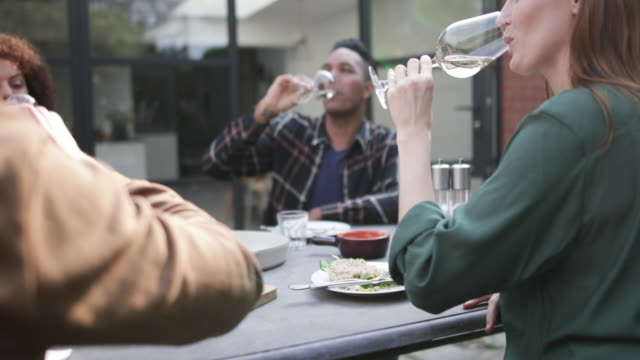 Group of adult friends tasting white wine at a meal outdoors
