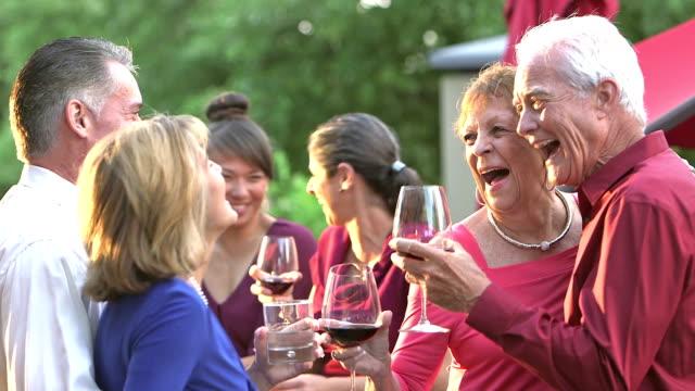 gruppe von erwachsenen im freien auf einer party, trinken, tanzen - older woman fun stock-videos und b-roll-filmmaterial