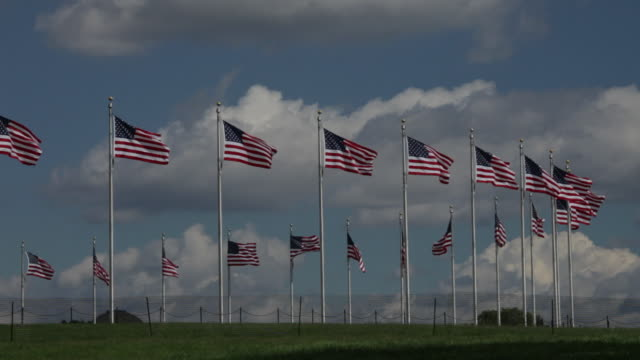 Group of American Flags In the Breeze