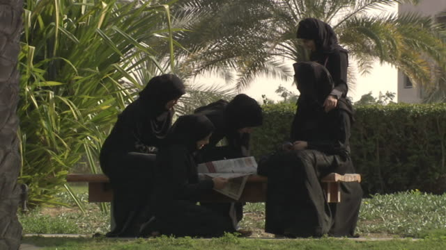 ws group of arabian women discussing in park / dubai city, dubai, saudi arabia  - サウジアラビア点の映像素材/bロール