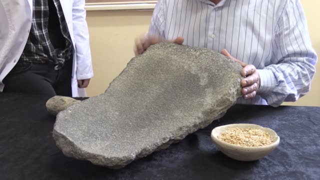 A group of archaeologists have unearthed a grinding stone dating back to Urartian era in eastern Turkey Excavations in an Urartian castle of...