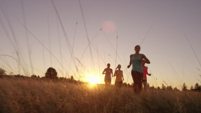 group of attractive female runners running outdoors at sunset - participant stock videos and b-roll footage