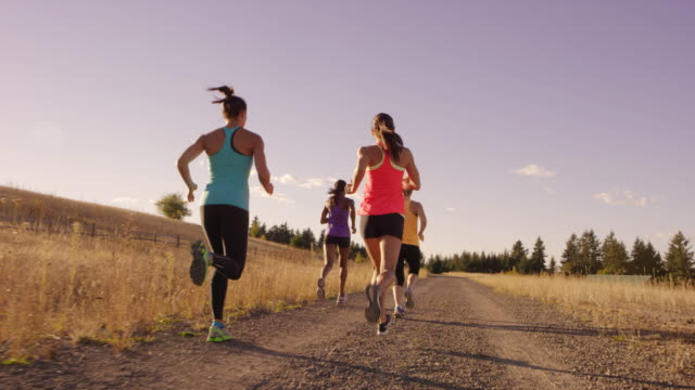 vídeos de stock e filmes b-roll de group of attractive female runners running outdoors - competition