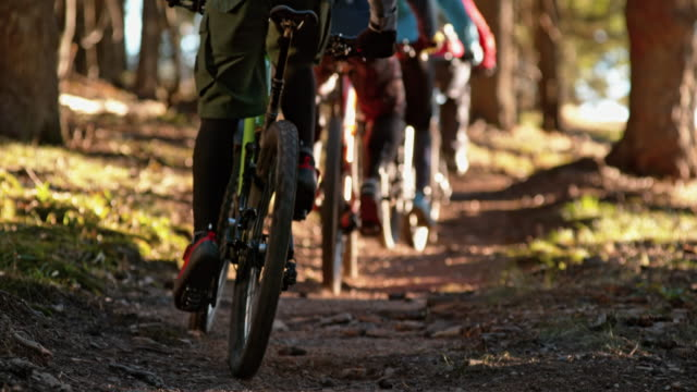 vídeos de stock, filmes e b-roll de slo mo grupo de motociclistas montando uma trilha florestal iluminada pelo sol - hobbie