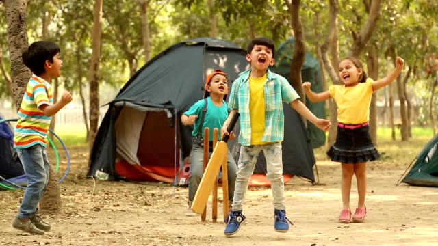 Group of boys and girl playing cricket in the park, Delhi, India