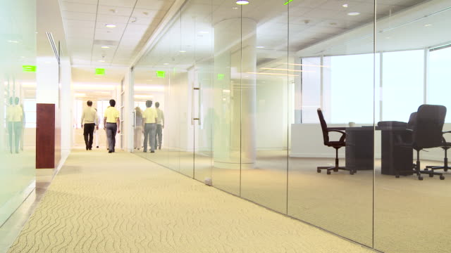 Group of business professionals walking away down office hallway