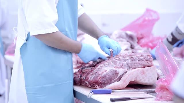 vidéos et rushes de groupe de travail de boucher, de la viande fraîche usine de traitement - charlotte médicale ou sanitaire