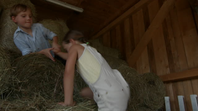 group of children in stable playing with hay - bib overalls stock videos and b-roll footage