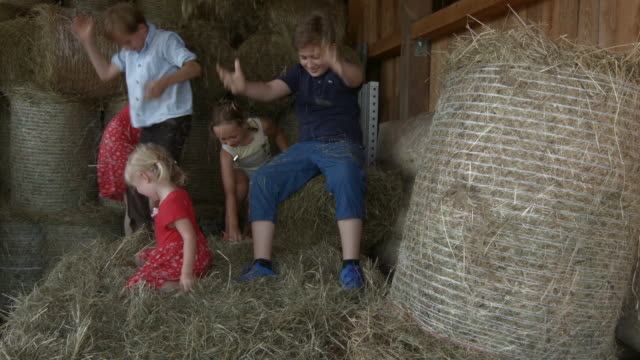 Group of children in stable playing with hay