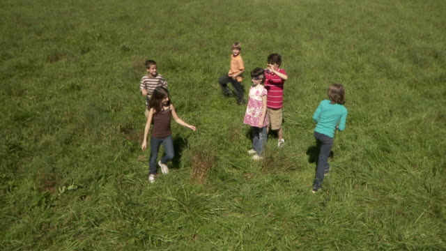 ws ha group of children (3-12) playing in meadow / hampton, new jersey, usa - blindfold stock videos and b-roll footage