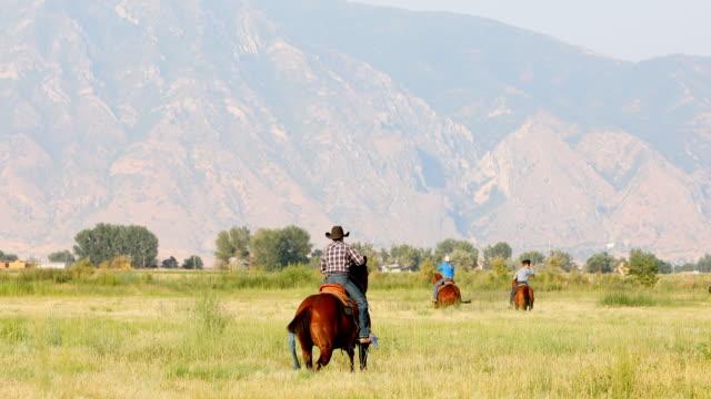 vidéos et rushes de groupe de cow-boys à cheval à travers les plaines - équitation de loisir