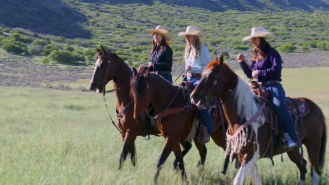 group of cowgirls horse riding across a paddock - cowgirl stock videos & royalty-free footage