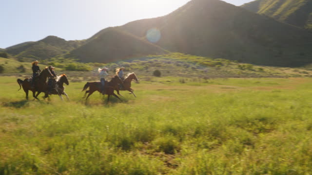 group of cowgirls horse riding fast through a paddock - all horse riding stock videos and b-roll footage