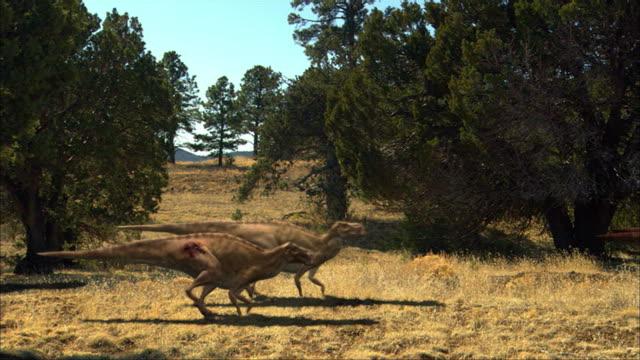 CGI, MS, Group of dinosaurs walking in field