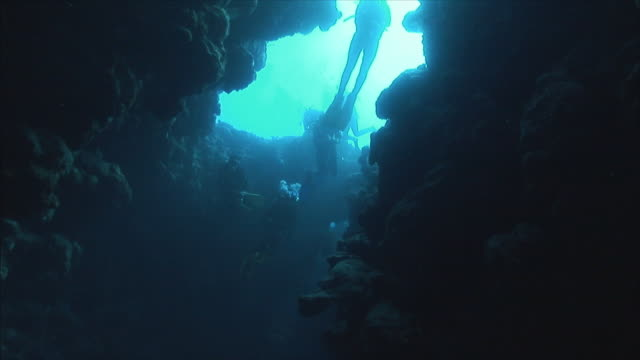 stockvideo's en b-roll-footage met ws la group of divers at top of coral pipe in red sea / sharm-el-sheikh, egypt  - scubaduiken