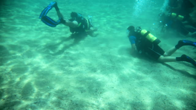 a group of divers underwater taking a scuba diving course - cylinder stock videos & royalty-free footage
