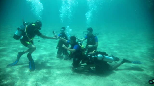 a group of divers underwater taking a scuba diving course - scuba diving stock videos & royalty-free footage